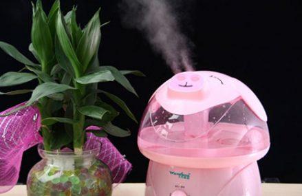 Những vấn đề mà người dùng cần biết về máy tạo ẩm